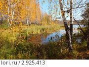 Осенний пейзаж. Стоковое фото, фотограф Виталий Горелов / Фотобанк Лори