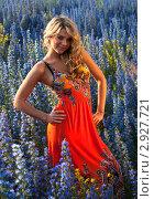 Купить «Девушка в ярком платье среди полевых цветов», фото № 2927721, снято 15 июня 2010 г. (c) bashta / Фотобанк Лори