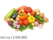 Купить «Различные овощи», фото № 2929965, снято 5 ноября 2011 г. (c) Ласточкин Евгений / Фотобанк Лори