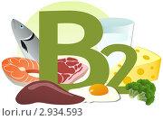 Купить «Содержание витамина В2 в продуктах», иллюстрация № 2934593 (c) ivolodina / Фотобанк Лори