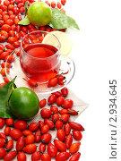 Купить «Витаминный чай с лимоном и шиповником», фото № 2934645, снято 2 ноября 2011 г. (c) Марина Сапрунова / Фотобанк Лори