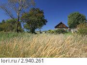 Домик у леса. Стоковое фото, фотограф Сергей / Фотобанк Лори