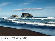 Купить «Камчатский берег, острова в Тихом океане», фото № 2942981, снято 4 сентября 2011 г. (c) А. А. Пирагис / Фотобанк Лори