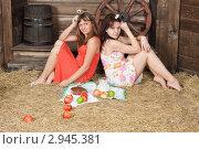 Купить «Молодые женщины обедают на сеновале», фото № 2945381, снято 10 апреля 2011 г. (c) Сергей Дубров / Фотобанк Лори