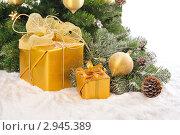 Купить «Подарки под елкой», фото № 2945389, снято 13 ноября 2010 г. (c) Литова Наталья / Фотобанк Лори