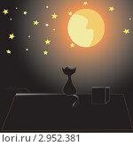 Кошка на крыше ночью. Стоковая иллюстрация, иллюстратор Екатерина Шевченко / Фотобанк Лори