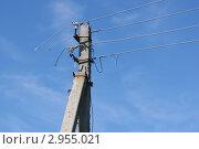 Электрический столб с оборванными проводами. Стоковое фото, фотограф Роман Угольков / Фотобанк Лори