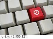 """Купить «Красная кнопка с символом """"запрет"""" на клавиатуре компьютера, рендеринг», иллюстрация № 2955121 (c) Дмитрий Кутлаев / Фотобанк Лори"""
