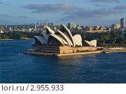 Купить «Оперный театр в Сиднее», эксклюзивное фото № 2955933, снято 10 ноября 2011 г. (c) Аркадий Захаров / Фотобанк Лори