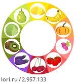 Купить «Фруктово-овощная палитра», иллюстрация № 2957133 (c) ivolodina / Фотобанк Лори
