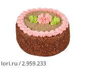 Купить «Торт на белом фоне», эксклюзивное фото № 2959233, снято 27 октября 2011 г. (c) Дмитрий Неумоин / Фотобанк Лори