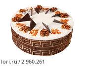 Купить «Торт», эксклюзивное фото № 2960261, снято 27 октября 2011 г. (c) Дмитрий Неумоин / Фотобанк Лори