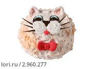 Купить «Детский торт -кошечка», эксклюзивное фото № 2960277, снято 27 октября 2011 г. (c) Дмитрий Неумоин / Фотобанк Лори