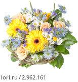 Купить «Весенний букет», фото № 2962161, снято 20 мая 2019 г. (c) Гараев Александр / Фотобанк Лори