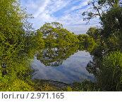 Купить «Отражения деревьев и неба в озере», фото № 2971165, снято 27 июля 2010 г. (c) Олег Рубик / Фотобанк Лори
