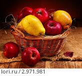 Купить «Яблоки и груши в плетеной корзине», фото № 2971981, снято 6 ноября 2011 г. (c) Gennadiy Poznyakov / Фотобанк Лори