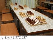 Купить «Перед шахматным турниром», фото № 2972337, снято 20 ноября 2011 г. (c) Юлия Кузнецова / Фотобанк Лори