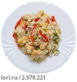 Рис с курицей и овощами. Стоковое фото, фотограф Суворова Нина / Фотобанк Лори