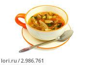 Купить «Суп из квашеной капусты и мяса», фото № 2986761, снято 24 ноября 2011 г. (c) Марина Сапрунова / Фотобанк Лори