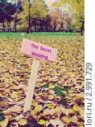 Свадебная табличка в осеннем парке. Стоковое фото, фотограф Костырина Елена / Фотобанк Лори