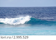 Купить «Красивый гребень океанской волны», фото № 2995529, снято 24 ноября 2011 г. (c) Татьяна Кахилл / Фотобанк Лори