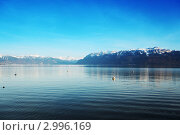 Купить «Женевское озеро, снежные горы и синее небо на заднем плане», фото № 2996169, снято 22 февраля 2019 г. (c) Иван Михайлов / Фотобанк Лори
