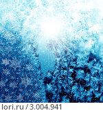 Купить «Морозный узор на стекле», фото № 3004941, снято 9 февраля 2010 г. (c) ElenArt / Фотобанк Лори