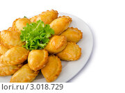 Купить «Полная тарелка маленьких пирожков с мясом на белом фоне», фото № 3018729, снято 3 сентября 2011 г. (c) Elnur / Фотобанк Лори