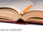 Купить «Открытая старая книга», фото № 3023237, снято 30 ноября 2011 г. (c) Игорь Ткачёв / Фотобанк Лори