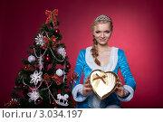 Купить «Девушка-снегурочка с подарком в руках около новогодней елки», фото № 3034197, снято 29 марта 2020 г. (c) Гурьянов Андрей / Фотобанк Лори