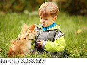 Мальчик, ребенок сидит на траве с собакой. Стоковое фото, фотограф Светлана  Ковалевская / Фотобанк Лори