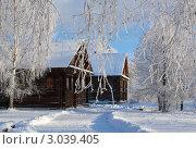 Зимний пейзаж. Стоковое фото, фотограф ElenArt / Фотобанк Лори