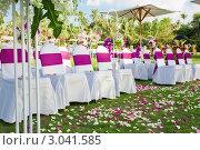 Купить «Стулья для гостей на свадебной церемонии под открытым небом», фото № 3041585, снято 11 ноября 2011 г. (c) Дмитрий Эрслер / Фотобанк Лори
