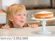 Купить «Мальчик смотрит на торт на подставке и облизывает губы», фото № 3052069, снято 19 марта 2000 г. (c) Monkey Business Images / Фотобанк Лори