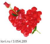 Купить «Сердце из лепестков роз, пронзенное цветком», фото № 3054289, снято 27 сентября 2007 г. (c) Николай Охитин / Фотобанк Лори
