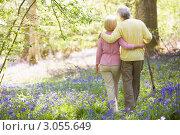 Счастливая пара гуляет по лесу в летний день, мужчина опирается на трость. Стоковое фото, фотограф Monkey Business Images / Фотобанк Лори