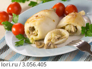 Купить «Кальмар, фаршированный картофелем с грибами», эксклюзивное фото № 3056405, снято 16 декабря 2011 г. (c) Александр Курлович / Фотобанк Лори
