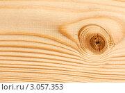 Купить «Сучок на деревянной доске», фото № 3057353, снято 12 декабря 2011 г. (c) Руслан Кудрин / Фотобанк Лори