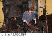 Купить «Кузнец за работой», эксклюзивное фото № 3060897, снято 8 октября 2011 г. (c) Елена Коромыслова / Фотобанк Лори