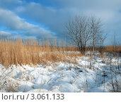 Зимний пейзаж. Стоковое фото, фотограф Андрей Грибачев / Фотобанк Лори