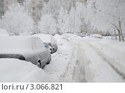Санкт-Петербург. Заснеженная улица. Стоковое фото, фотограф Александронец Олеся / Фотобанк Лори