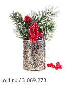 Еловые ветки с ягодами в вазе. Стоковое фото, фотограф Алина Анохина / Фотобанк Лори