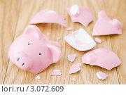 Купить «Разбитая розовая свинья-копилка», фото № 3072609, снято 10 января 2008 г. (c) Monkey Business Images / Фотобанк Лори