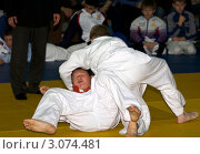 Дзюдо (2009 год). Редакционное фото, фотограф Пакалин Сергей / Фотобанк Лори