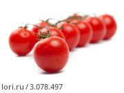 Спелые помидоры черри на белом фоне. Стоковое фото, фотограф Константин Сидоров / Фотобанк Лори