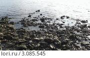 Пейзаж. Стоковое фото, фотограф Сергей  Мацнев / Фотобанк Лори