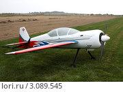 Модель самолета (2010 год). Редакционное фото, фотограф Екатерина Ильина / Фотобанк Лори