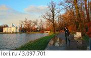Купить «Туристы в Пушкинском парке, Санкт-Петербург», видеоролик № 3097701, снято 23 декабря 2011 г. (c) Михаил Коханчиков / Фотобанк Лори