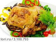 Купить «Жареная индейка с овощами на тарелке», фото № 3100793, снято 20 августа 2011 г. (c) Elnur / Фотобанк Лори