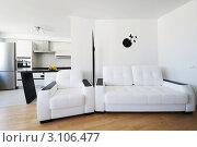 Купить «Белые диваны в современном интерьере», фото № 3106477, снято 1 июля 2010 г. (c) Николай Охитин / Фотобанк Лори